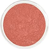 Studio Mineral Makeup Vision Premium Best Natural Blush / Bismuth Free / Gluten Free