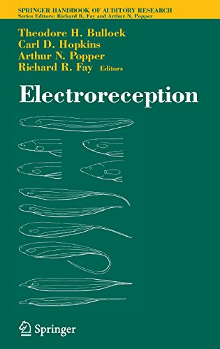 Electroreception (Springer Handbook Of Auditory Research)