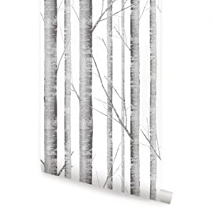 birch tree christian singles Advanced tree technology stocks a vast supply of oasis paper white birch trees for your convenience stop by, or click for more info.