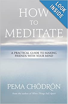 How to Meditate: A Practical Guide to Making Friends with Your Mind e-book