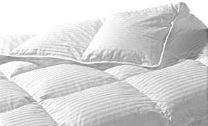 Highland Feather Manufacturing 40-Ounce Santa Monica Goose Down Duvet, Queen, White
