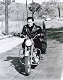 Elvis Presley The King Of Blues Rock And Roll Music 10x8 Photograph Picture