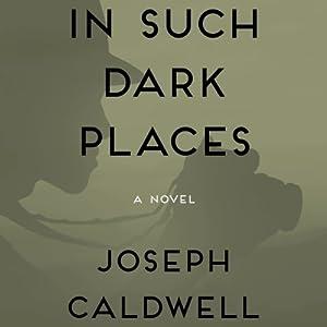 In Such Dark Places Audiobook