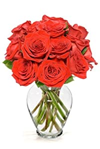 12 Long Stem Red Roses - With Vase
