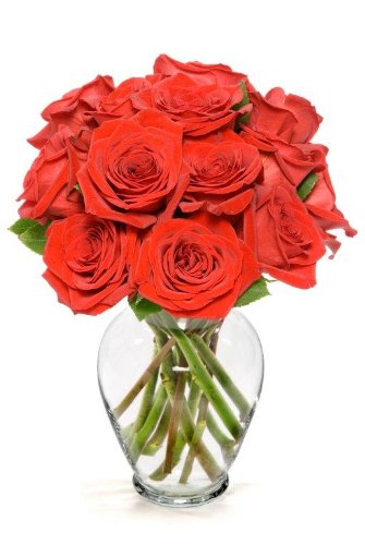 Benchmark Bouquets Dozen Red Roses, With Vase