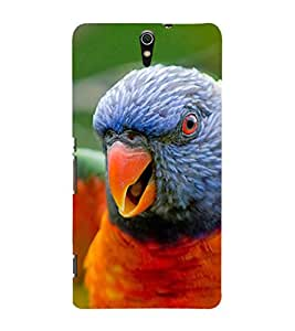 Ebby Premium Printed Mobile Back Case Cover With Full protection For Sony Xperia C5 (Designer Case)