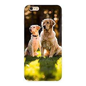 Do Kutte Back Case Cover for iPhone 6 Plus 6S Plus
