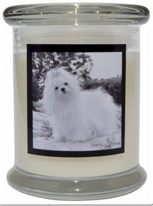Aroma Paws 361 Breed Candle 12 Oz. Jar - Maltese