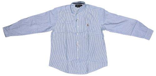 Polo Ralph Lauren Slim Custom-Fit Stripe Oxford Shirt-Blue/White Striped - XL