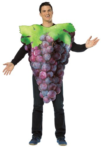 Rasta Imposta Get Real Purple Grapes Costume for Adults