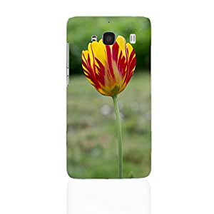 The Palaash Mobile Back Cover for Xiaomi RedMI 2