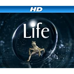 Life Season 1 [HD]