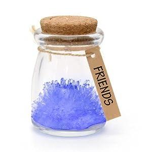 Iggi Crystal Garden Grow Your Own Wish Flower, Friends, Blue