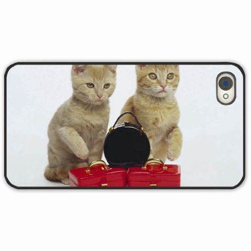 iPhone 4 4S Black Hardshell Case kittens steam