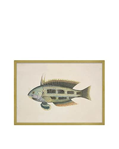 Really Nice Things Panel Decorativo Fish