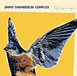 Life Begins Again By Jimmy Chamberlin Complex (2005-01-24)