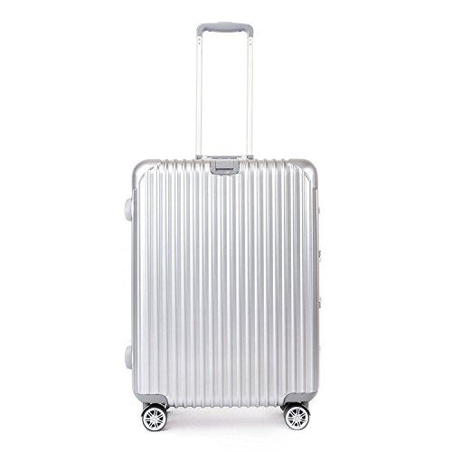 Valigie Trolley Bagagli a Mano Valigia Rigida con Lucchetto TSA Bagaglio Leggero con 4 Ruote 360°Argento 75CM 29IN 94Litri