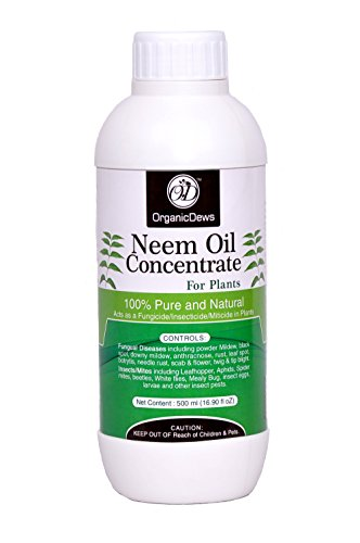 organicdews insecticide neem oil concentrate for plants fl oz home garden lawn garden. Black Bedroom Furniture Sets. Home Design Ideas