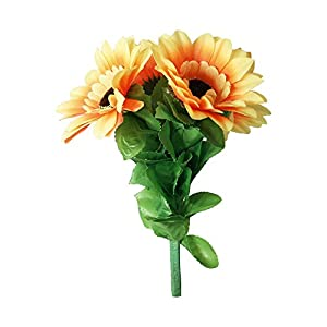 MMS Amazing Split Sunflower by Premium Magic - Trick