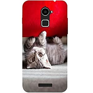 Casotec Cute Cat Design Hard Back Case cover for Coolpad Note 3 Lite