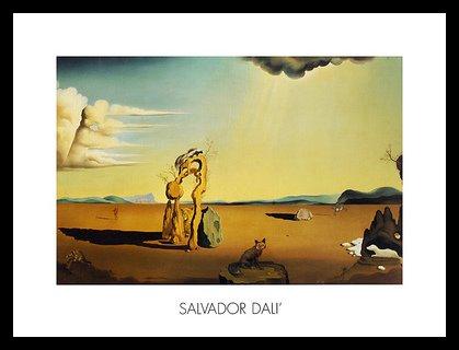 Salvador Dali Die nackte Frau