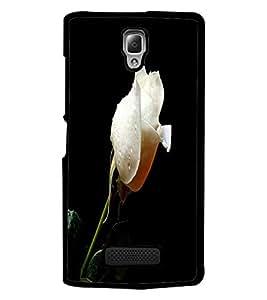 PrintDhaba White Rose D-2002 Back Case Cover for LENOVO A2010 (Multi-Coloured)