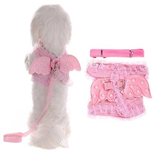 LianL (Matching Dog Costumes)