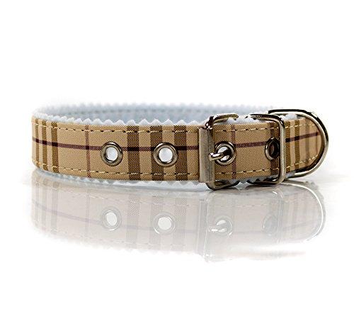 hundehalsband-kariert-verstellbar-von-ca-32-38-cm-hunde-halsband
