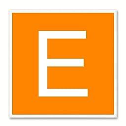 Alphabet E Orange Canvas Print White Frame Kids Bedroom Wall Décor Home Art