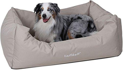 10 tipps ein neuer hund zieht ein aus liebe zum haustier. Black Bedroom Furniture Sets. Home Design Ideas