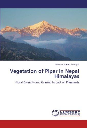 Vegetation of Pipar in Nepal Himalayas