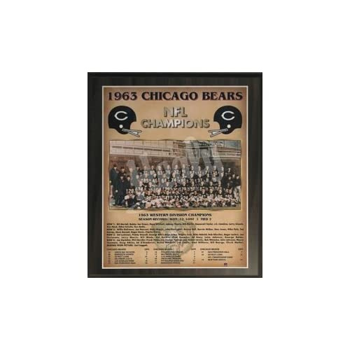 Amazon.com - Chicago Bears 1963 Super Bowl Champions Healy Plaque -