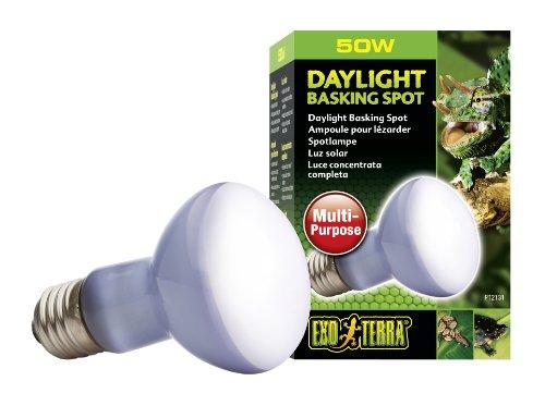 Exo Terra Sun-Glo Basking Spot Lamp, 50-Watt/120-Volt (50 Watt Heat Lamp compare prices)