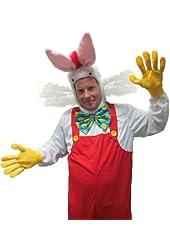 Cartoon Framed White Rabbit Costume
