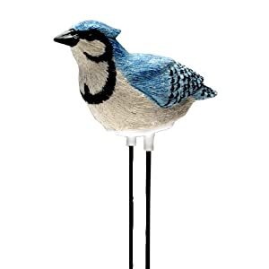 Singing Blue Jay - Plant Pal Soil Moisture Meter (Blue Jay Sings When Plant Is Thirsty!)