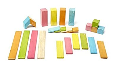 On Sale 24 Piece Magnetic Wooden Block Set, Tints by Tegu