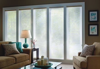 "Select Blinds 2"" Sheer Light Filtering Shades 72x60"