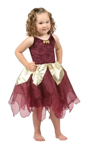 [Deep Wood Fairy Deluxe Dress-up Costume LARGE (5-7)] (Wood Fairy Costumes)