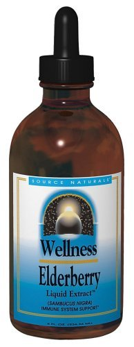 Source Naturals Wellness Elderberry Liquid Extract, 8 Ounce Glass Bottle