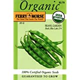 Ferry-Morse 3162 Organic Bean Seeds, Bush Blue Lake 274 (35 Gram Packet)