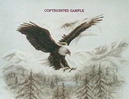 Eagle Spirit - Drawing by Cindy Farmer