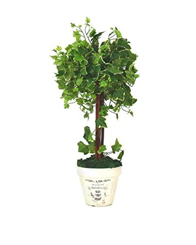 Creative Displays Inc. English Ivy Clay Pot Topiary, Green/White
