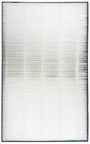 Sharp True HEPA Replacement Filter For FP-A40UW (Sharp Hepa Filter compare prices)