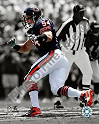 Brian Urlacher Bears Spotlight 8x10 Photo