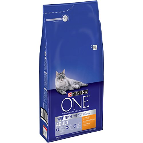 purina-one-adult-dry-cat-food-chicken-and-whole-grains-6kg
