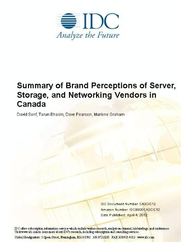 Summary of Brand Perceptions of Server, Storage,