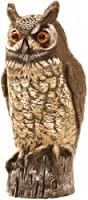Dalen OW6 Gardeneer 16-Inch Molded Owl from Dalen