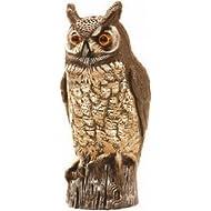 Molded Owl