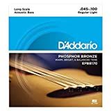 D'Addario EPBB170 Phosphor Bronze Acoustic Bass Strings, Long Scale, 45-100 (Color: Limited Edition)
