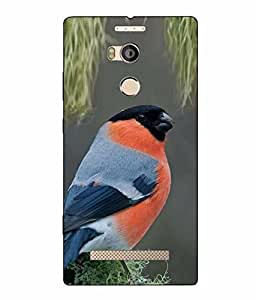 Case Cover Bird Printed Colorful Hard Back Cover For Gionee Elife E8